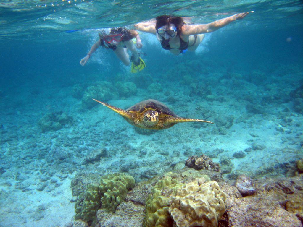 Snorkeling South Crete